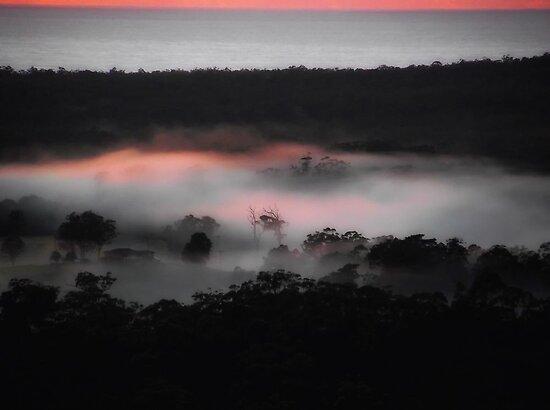 Dawns Tint... by debsphotos