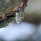 icy droplet by Inzaie