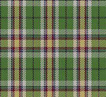 01916 Carmen Lau Tartan Fabric Print Iphone Case by Detnecs2013