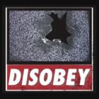 Disobey TV by Renars Slavinskis
