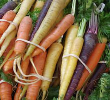 Colorful Carrots by Tom  Reynen