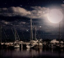 Dreamy Night © by Dawn M. Becker