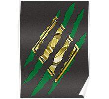 Secret Identity - Green Ranger Poster