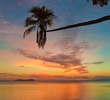 Fiji Sunset by Dianne Phelps
