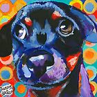 Rottweiler Puppy  by Nancy Daleo