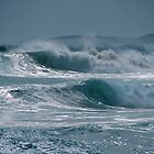 Surf's Up by pictureit
