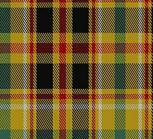 01950 Cawte of Middlebanknock Tartan Fabric Print Iphone Case by Detnecs2013