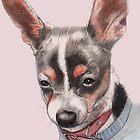 Chihuahua Portrait by Nancy Daleo