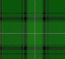 01951 Celtic Football Club Tartan Fabric Print Iphone Case by Detnecs2013