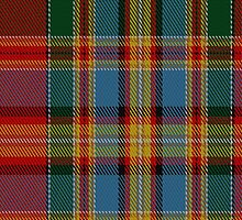 01966 Chattan (brown stripe variation) Clan/Family Tartan Fabric Print Iphone Case by Detnecs2013