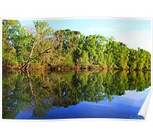 Reflections On The River Poster