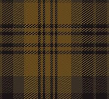 01975 Chindecella Gorse (Kemete Heil) Tartan Fabric Print Iphone Case by Detnecs2013