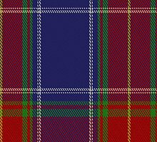 01977 Chinese Scottish Tartan Fabric Print Iphone Case by Detnecs2013