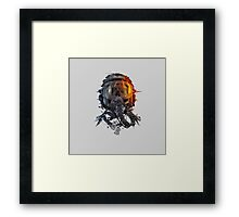 battlefield death pilot Framed Print