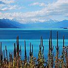 Lake Pukaki by pictureit