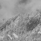 Flatiron Snow Dusting Close Up Boulder Colorado BW by Bo Insogna