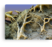 Trees II:  Offshoots of the Family Tree Canvas Print