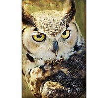 Hoot Cares Photographic Print