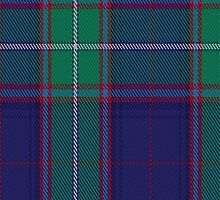 01041 Coldstream District Tartan Fabric Print Iphone Case by Detnecs2013
