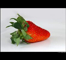 Fragaria x Ananassa - Strawberry by © Sophie W. Smith