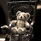 Bear in a Chair by Guigphotography