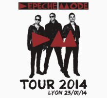 Depeche Mode : Delta Machine Tour 2014 - Lyon 23-01-14 by Luc Lambert