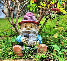 Funny garden gnome HDR by Eti Reid