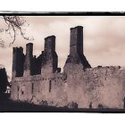 Irish Ruin on the Grounds of Modern Hotel by gloriart