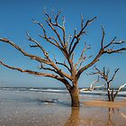 Botany Bay & Edisto Beach by JHRphotoART