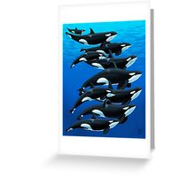 California Orcas Greeting Card
