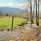 Cade's Cove by Amaelanders