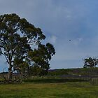 Mernda Landscape by Adam Le Good