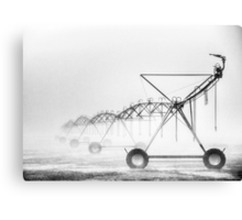 Dinosaurs in the Mist - Walwa Victoria (Monochrome) - The HDR Experience Canvas Print
