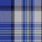 02001 Craig (Paisley) Artefact Tartan Fabric Print Iphone Case by Detnecs2013