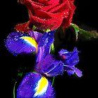 078-multicolor flowers by elvira1