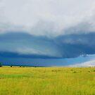 Sky - Masai Mara - Kenya by Charuhas  Images
