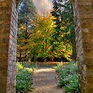 Autumn's Threshold by Steve Randall