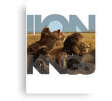 Lion Kings Canvas Print