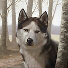 Siberian Husky by John Silver