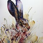 Mr Rabbit by Karl Fletcher