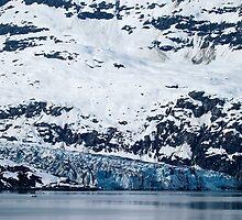 Glacier Bay, Alaska by Paul Wolf