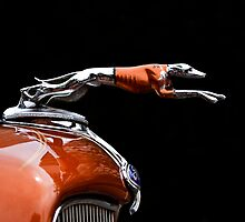 Hood Ornament  by Alex Preiss