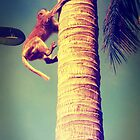 Tree Monkey by jevep