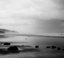 Oregon Coast by AmishElectricCo