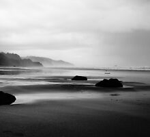 Oregon Coast #3 by AmishElectricCo
