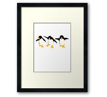 Three dancing Penguins Framed Print