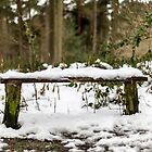 Snow seat by Barry Robinson