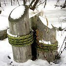 Posts In Snow by Mikell Herrick