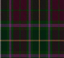 02021 Crosby Tartan Fabric Print Iphone Case by Detnecs2013