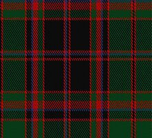 02031 Cumming-Buchan Hunting Clan/Family Tartan Fabric Print Iphone Case by Detnecs2013